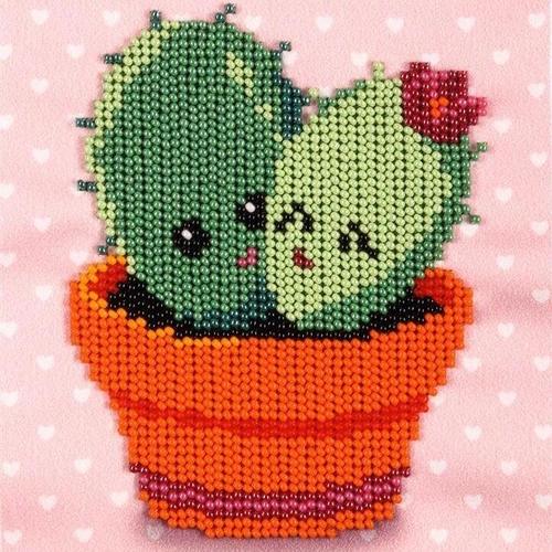Cacti Paradise