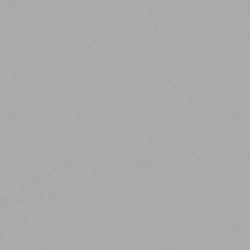 Avery Dennison® 891 - Silver Grey Metallic