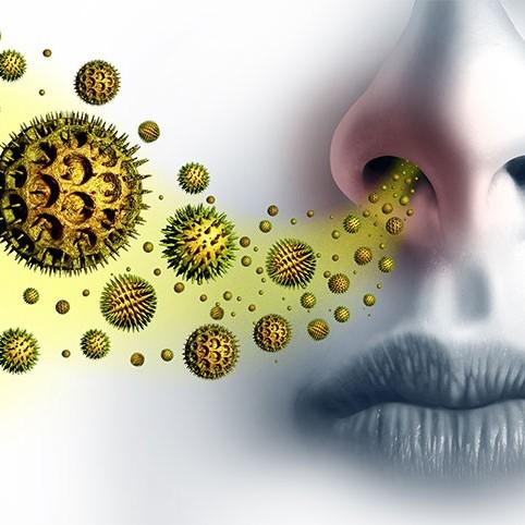 seasonal allergies and mental health