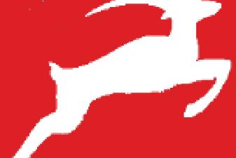 Race Timing News Valentine 10K  -  Norfolk Gazelles