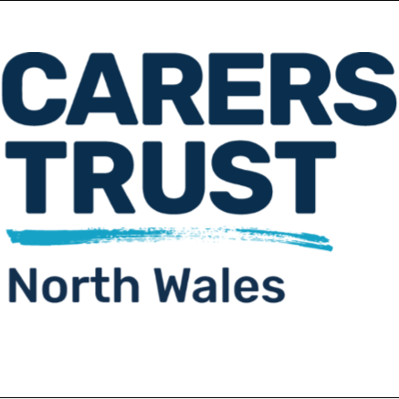 YOUNG ADULT CARER PROJECT OFFICER