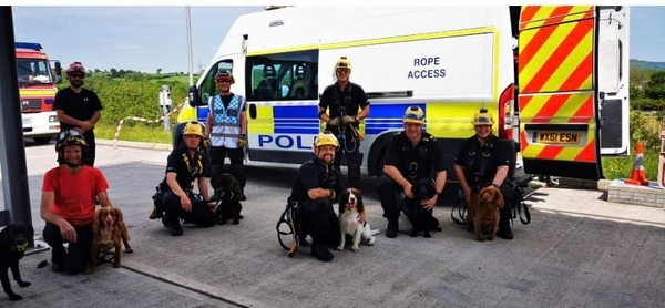 Rescue Dogs make Great Police Dogs