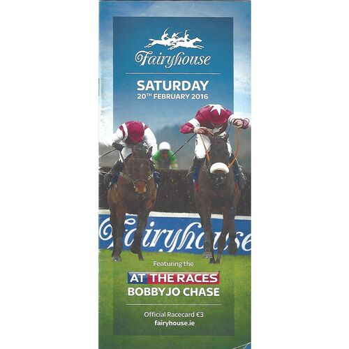 2016 Fairyhouse At The Races Meeting (20/02/2016) Horse Racing Racecard