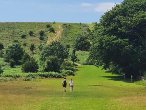 Mendip Hills of Somerset Day Walk (FULL)