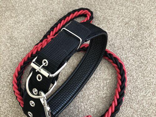Dog lead and collar