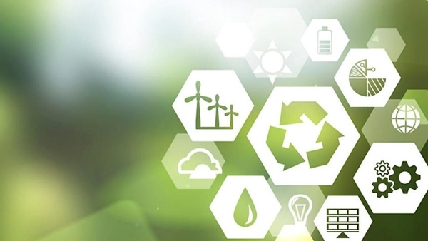 How ESG creates value for businesses and organisations