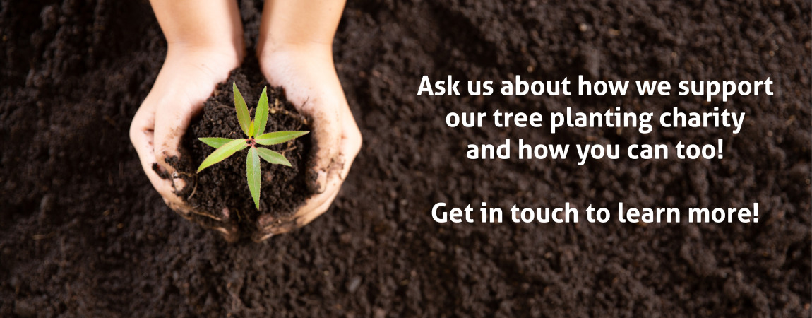Bath Leaflet Delivery Distribution, plant a tree charity
