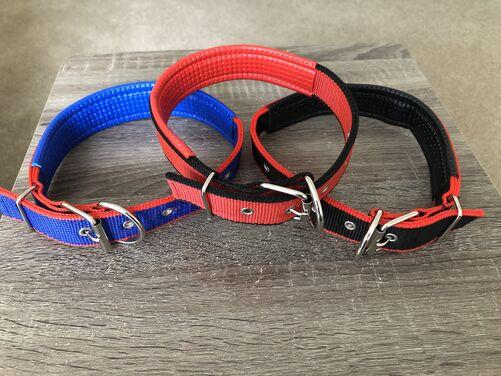 Medium size dog collar