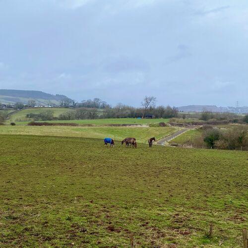 Bryn Celyn, Llanharry