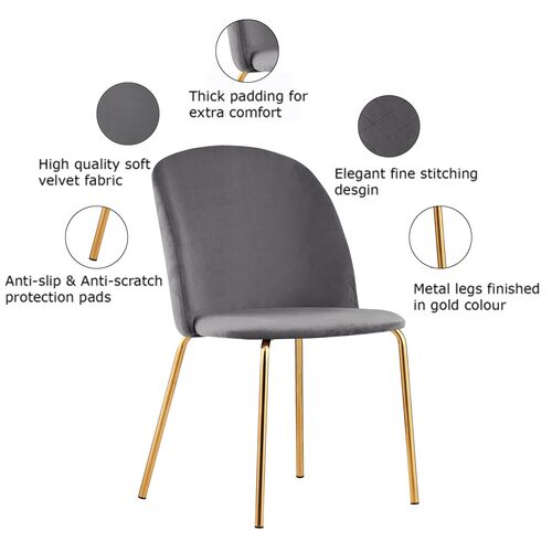 Set of 2 Dale Velvet Dining Chairs with Golden Finish Metal Legs (Dark Grey)