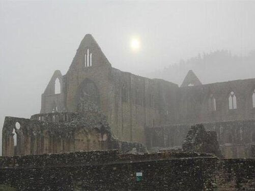 Advent Day Walk at Tintern Abbey and the Wye Valley