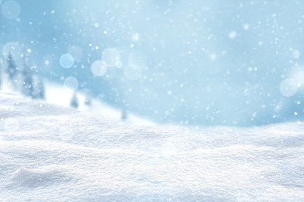 LAPA 4th Winter Conference 2021