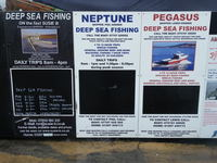 Fishing Trips from Lyme Regis