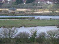 Axe Estuary Wetlands near Seaton and Axmouth