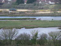 Axe Estuary Wetlands near Seaton and Axmouth
