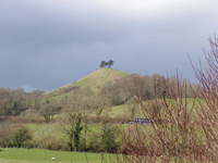 Colmer Hill near Bridport