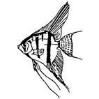 Angel Fish Rubber Stamp (Available in 3 sizes) from £6.89