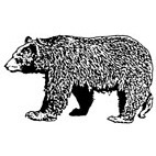 Brown Bear Rubber Stamp (Available in 3 sizes) from £6.89