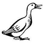Duck Rubber Stamp (Available in 3 sizes) from £6.89