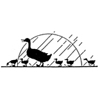 Duck with Ducklings Rubber Stamp (Available in 3 sizes) from £6.89