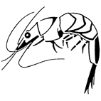 Prawn Rubber Stamp