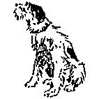 Scruffy Dog Rubber Stamp