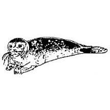 Seal Rubber Stamp