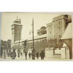 Early 1900s The Castle Cardiff Tuck's Town & City Series Postcard