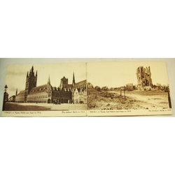 Ypres Postcards Clothier's Halls Intact (1912) and Destroyed (1919) by Antony d''Ypres
