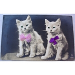 1920s Sequin Eyed Real Photo Postcard: Two Kittens
