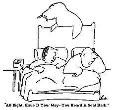 Seal barking - Thurber