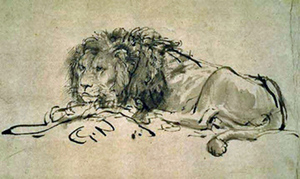 Drawing of a lion by rembrandt