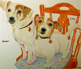 Two Jack Russells in coloured pencil