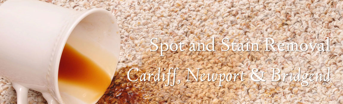 Carpet Cleaners in Cardiff