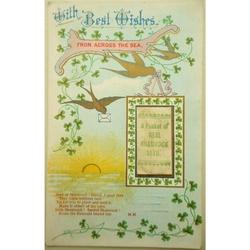 WWI (?)  Shamrock Seed Postcard