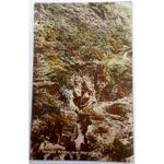 Parsons' Bridge Aberystwyth 1919 Postcard