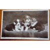We Three Puppies 1917 Real photo Postcard