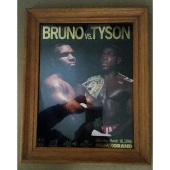 Bruno V Tyson Programme