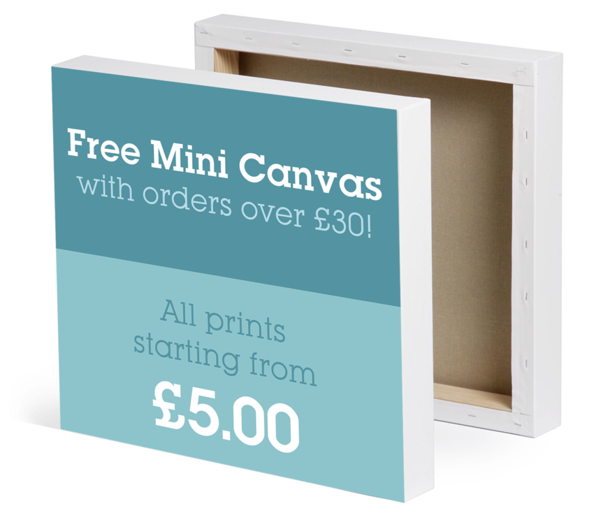 Free canvas mini print from Canvas Printing Online