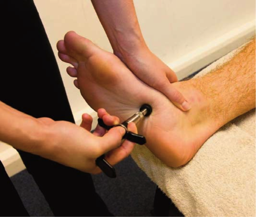 foot & ankle pain | lightwater health and chiropractic, Skeleton
