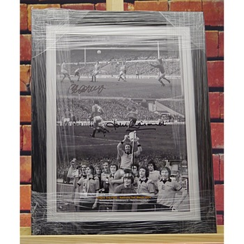 Wolves 74 Signed Montage