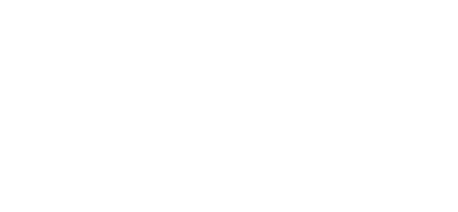 The Drain Guys