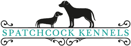 Dog Boarding Kennels in Gloucestershire - Spatchcock Kennels nr Cirencester