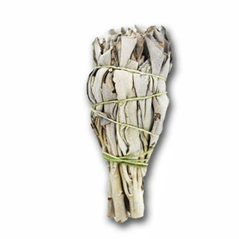 Small White Sage Smudge Stick