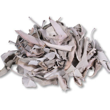 White Sage Loose Leaves (15g)