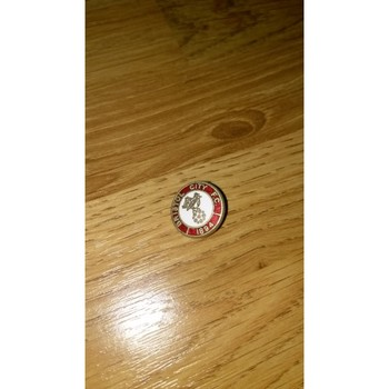 Bristol City Metal Football Badge
