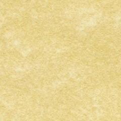 """Virgin Parchment Paper 8x10"""""""