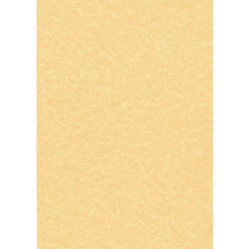 Regular Parchment Paper