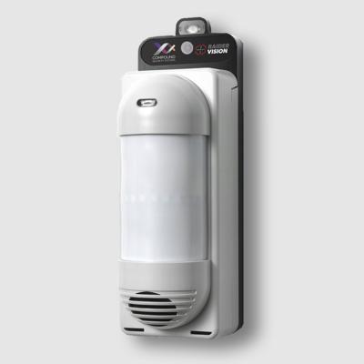 Wireless video detectors