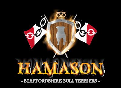 HAMASON SBT